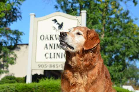 Oakville Animal Clinic
